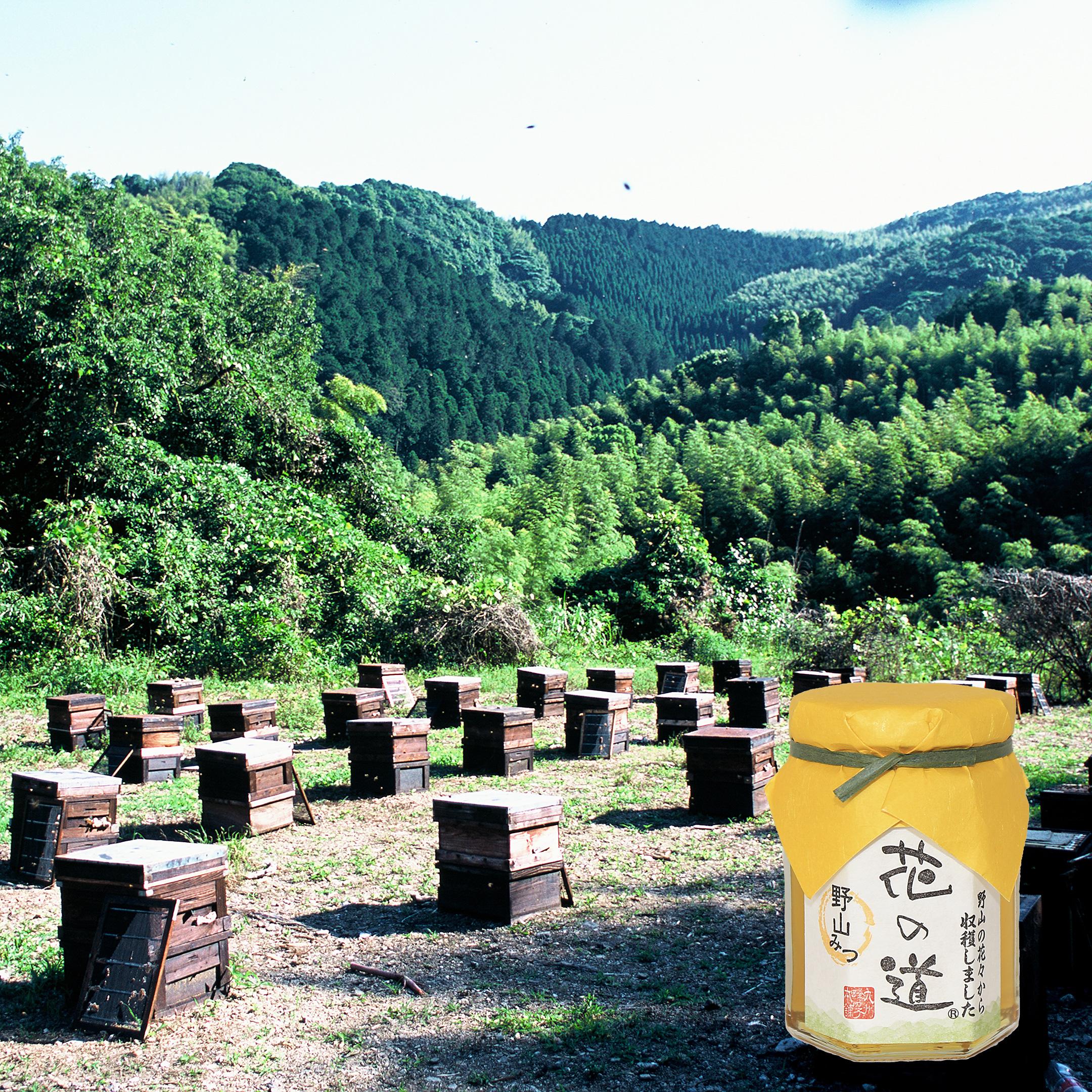 国産蜂蜜 花の道 野山みつ